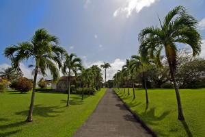 11. Plantation Leyritz, Martinique