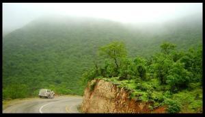 42. Hoff National Forest Al Mahra, Yaman