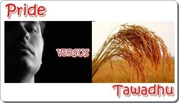 Pride Versus Tawadhu